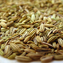 Organic fennel seed powder